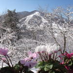 MIMI & REON - 食堂から見える斑尾山