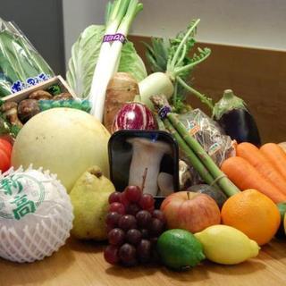 野菜を知り尽くした野菜ソムリエが作る野菜料理