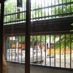 祇園たんと - 店内から見える巽橋