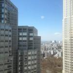 アル バーチョ - さすが〜29階の景色です