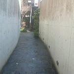 17726309 - 門をくぐってこの細い道を進みます