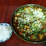 17734676 - 麻婆麺(汁あり)(700円)