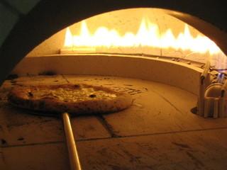 ハーレーパーク - 本格石窯で焼き上げるナポリピッツァ