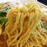 麺屋一耕 - 麺は中太