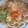 びっくりうどん - 料理写真:天ぷらうどん