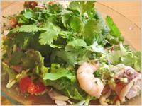 eL MamBo - パクチー山盛りサラダ!パクチーは茅ヶ崎の柳島でつくられています。香りがフレッシュです。