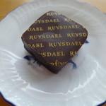 ロイスダール -