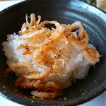 料理屋くおん - 料理写真:☆桜海老の食感が春を届けますね☆
