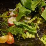 神戸牛炉窯焼ステーキ 雪月風花 北野坂 - 瀬戸内産タコとアオリイカ、、スズキのマリネ風サラダアップ