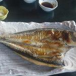 17995425 - 焼き魚定食
