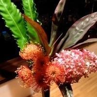 トワエモア - 週替わりでお花を飾っています