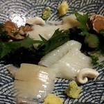 松 - イカ刺身