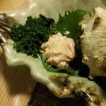 松 - ウマヅラハギ 肝アップ