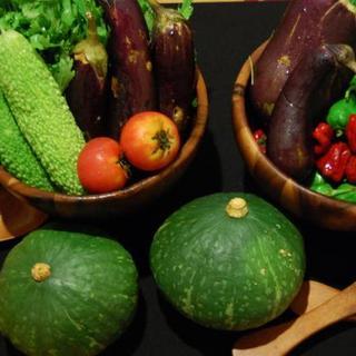 旬で新鮮な野菜を使ったお料理も豊富☆