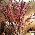 アプローズ - お花見シーズンは店内に桜をディスプレイ♪