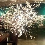 龢nagi - H25.03② 店内からの【桜】