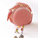 ル・ポミエ - ヨーヨー・オ・フレーズ マカロンとイチゴのムースのケーキです。
