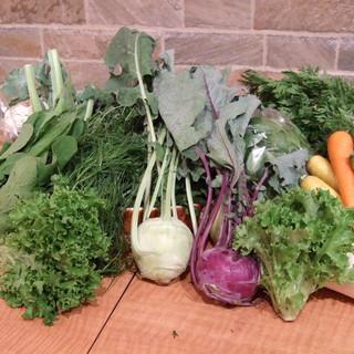 シェフが選ぶ美味しい有機野菜