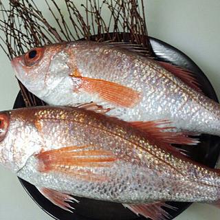 日本海と若狭湾でとれる新鮮魚介をぜひご堪能あれ!