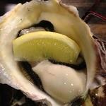 18171438 - 岩牡蠣