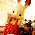 シルバニア森のキッチン - めっちゃ可愛いポーズで記念撮影に応じてくれるショコラウサギちゃん♪