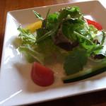 糸島バールSyana - カレーランチの野菜サラダ。彩りキレイです。お野菜も上質。