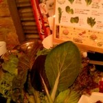 18274422 - サムギョプサルの野菜達1