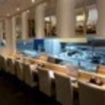 すし魚菜 かつまさ - 新鮮なネタが並ぶカウンター席