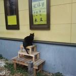 18283835 - 招き猫と営業案内