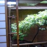 井泉 - 2階からの眺めです。
