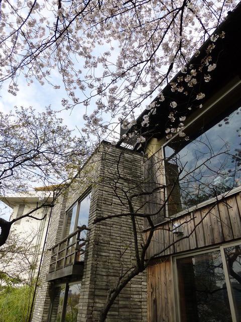 韻松亭 - 2階のデッキからの写真。