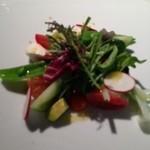 18357344 - インサラータ・トマト イタリア産モッツアレラ 季節の野菜 色々な種類のトマトが入っていたり、体に良さそうなサラダですね。