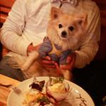 anea cafe - お誕生日のお祝いを愛犬といっしょに。