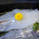 河太郎 - 大根のつまの上は白く見える