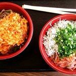浜のかきあげや - 由比丼と桜えびのかき揚げそば(今年(2013)も昨年と一緒でした。)(2013.4)