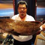 食房 四季 - 内観写真:九絵です。魚の王様で食べると運気を上がり強運が授かると昔から言われています。味は最高で四季の看板料理です。            横綱の1番好きな魚です。