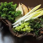 旬魚肴菜 和味 - 料理写真:和味では、店主自ら全国各地に旬な素材を調達に行っています。