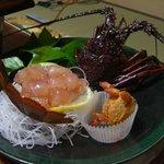 温泉民宿月見屋 - 料理写真:「伊勢海老 刺身」