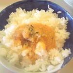 シロクマ食堂 - 明太子ソースご飯