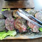 民宿ビーチ - ヒオウギ貝10個です