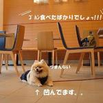 OneDayCafe - お洒落で広々~♪