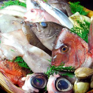 すぐそこで採れた新鮮な魚をお召し上がりいただけます!