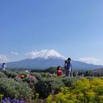 ペーパームーン - 大石公園から眺める富士