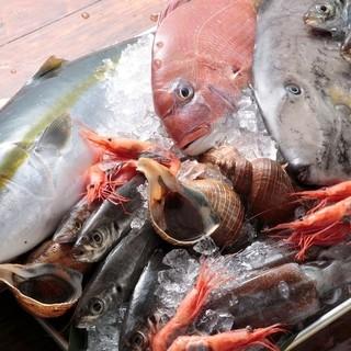 漁師直送季節の鮮魚と干物がイイ!