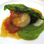 1868169 - 魚料理:帆立貝柱のポアレ ズッキーニとフルーツトマトのソース