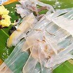 Hokkaidoubussan - 泳ぎイカ
