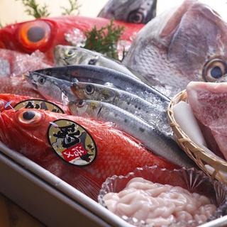鮮度抜群の天然魚介類!!