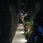 Kankokuanjupontochourinanha - 隣は赤いちょうちんの寅屋さんです