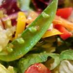 18714524 - 色彩豊かなランチサラダ、ボリュームあり!