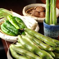 うけ月 - 旬の大切さにこだわり。厳選された野菜の数々